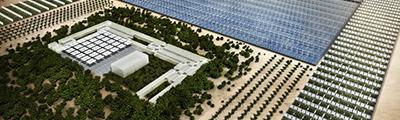 Tecnología israelí para cultivar hasta en el desierto