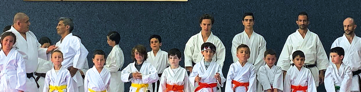 Clase abierta de Karate Do