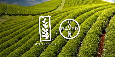 Prospera y Bayer: herramientas tecnológicas que ayudarán a agricultores mexicanos