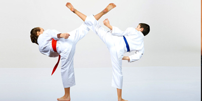 Primer torneo de Karate Do virtual